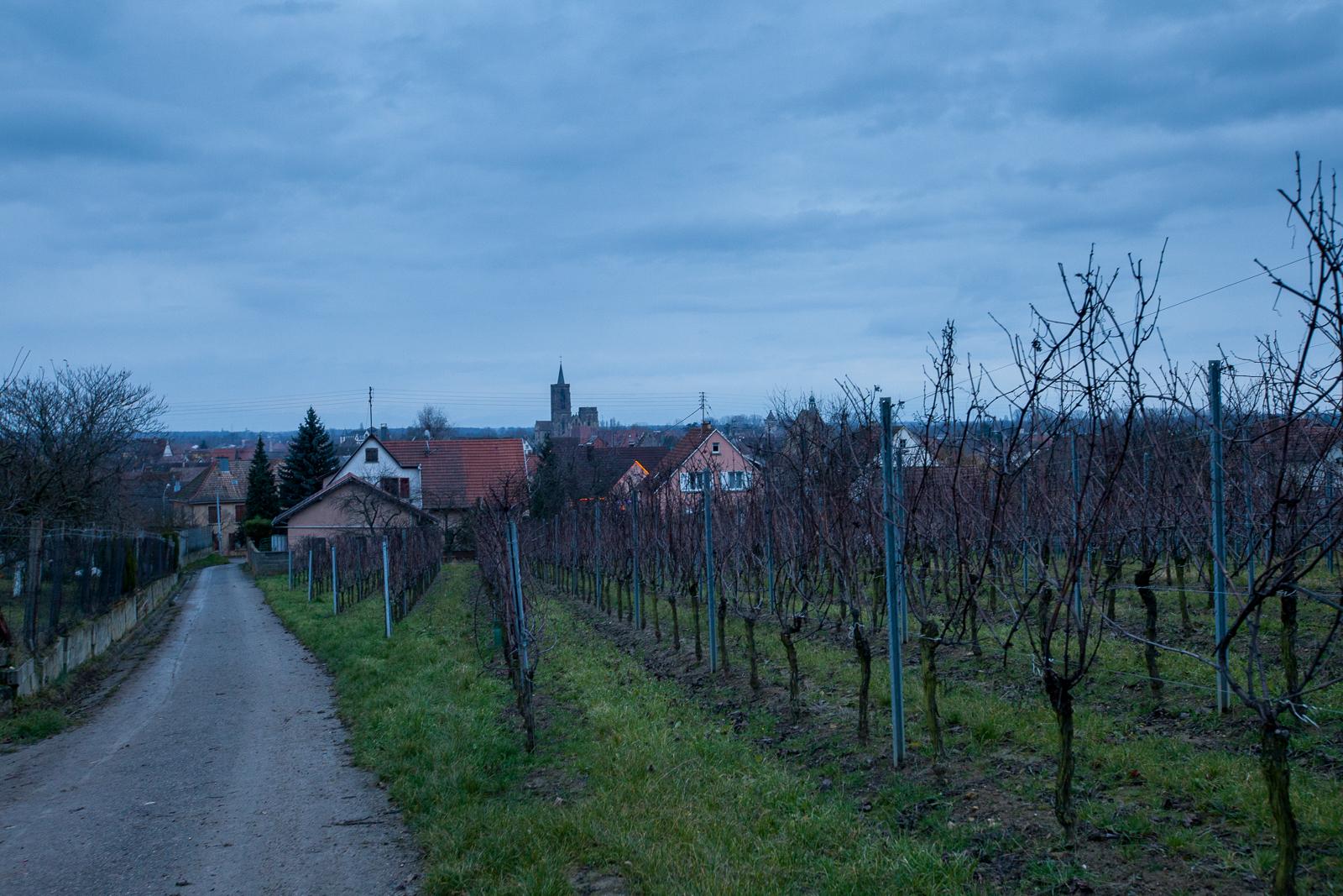 Dag01-Alsace-021-IMG_45749