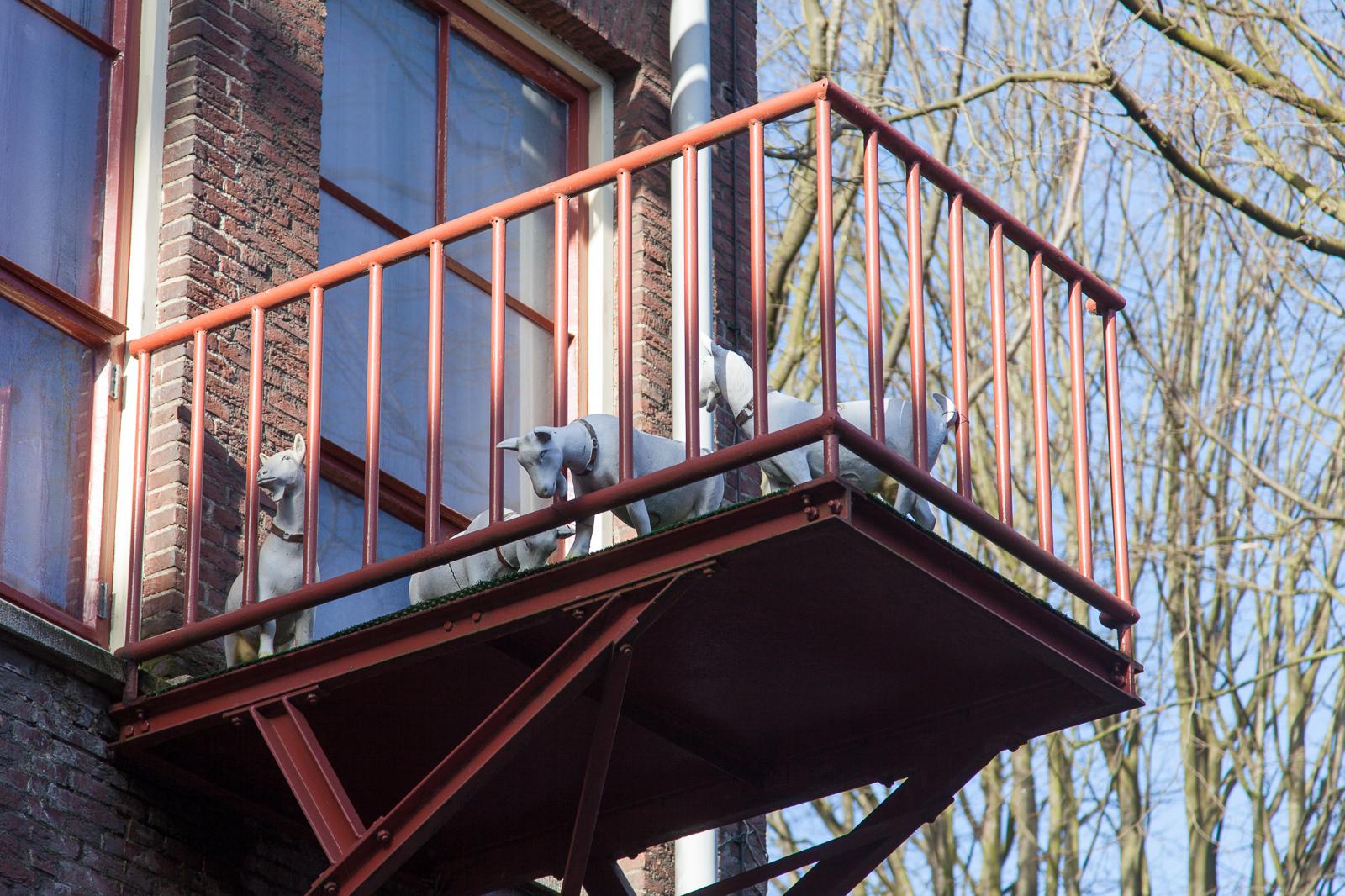Dag01-Delft-022-IMG_47335