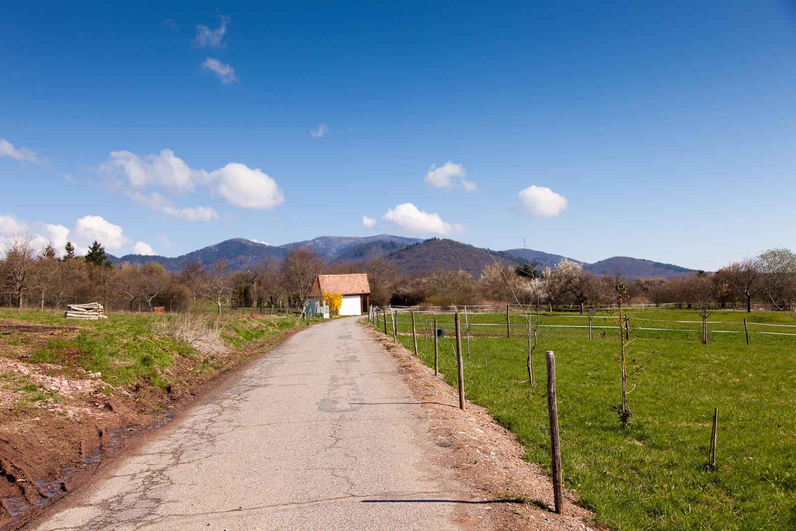 Dag02-Alsace-005-IMG_47998