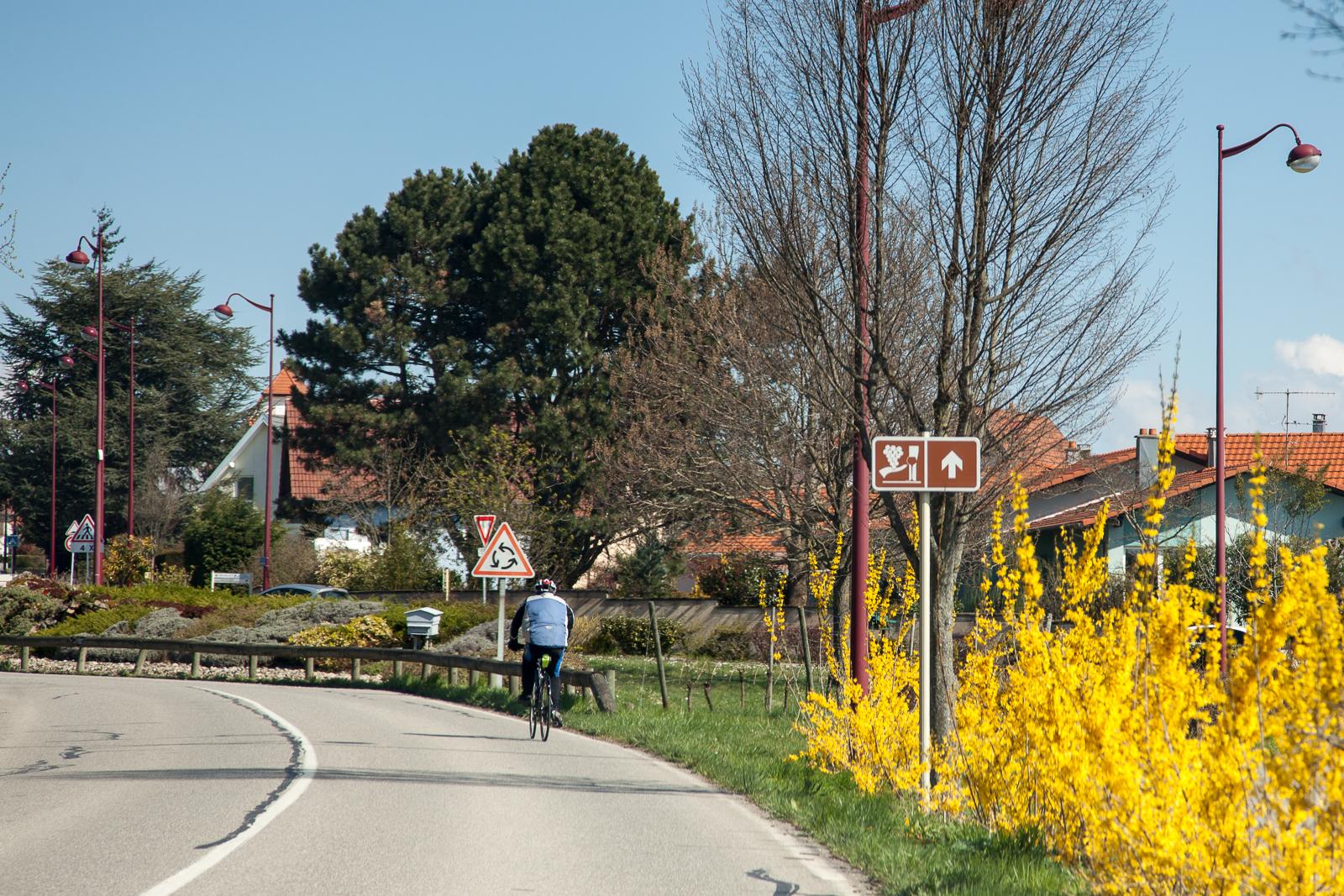 Dag02-Alsace-008-IMG_48017