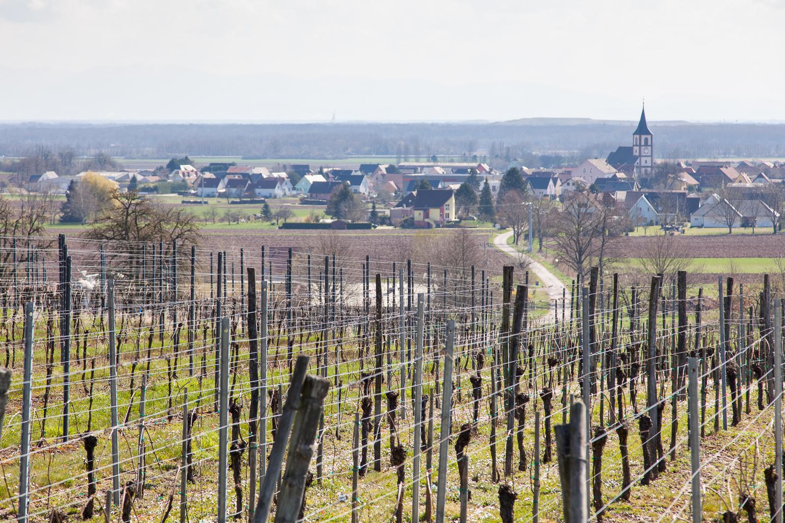 Dag02-Alsace-011-IMG_48021