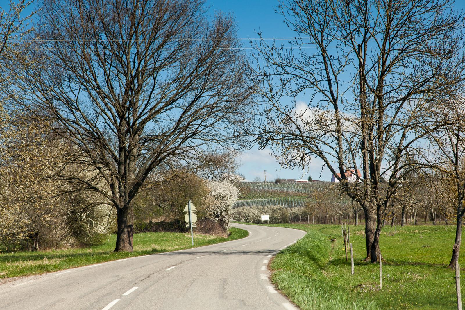 Dag02-Alsace-014-IMG_48033