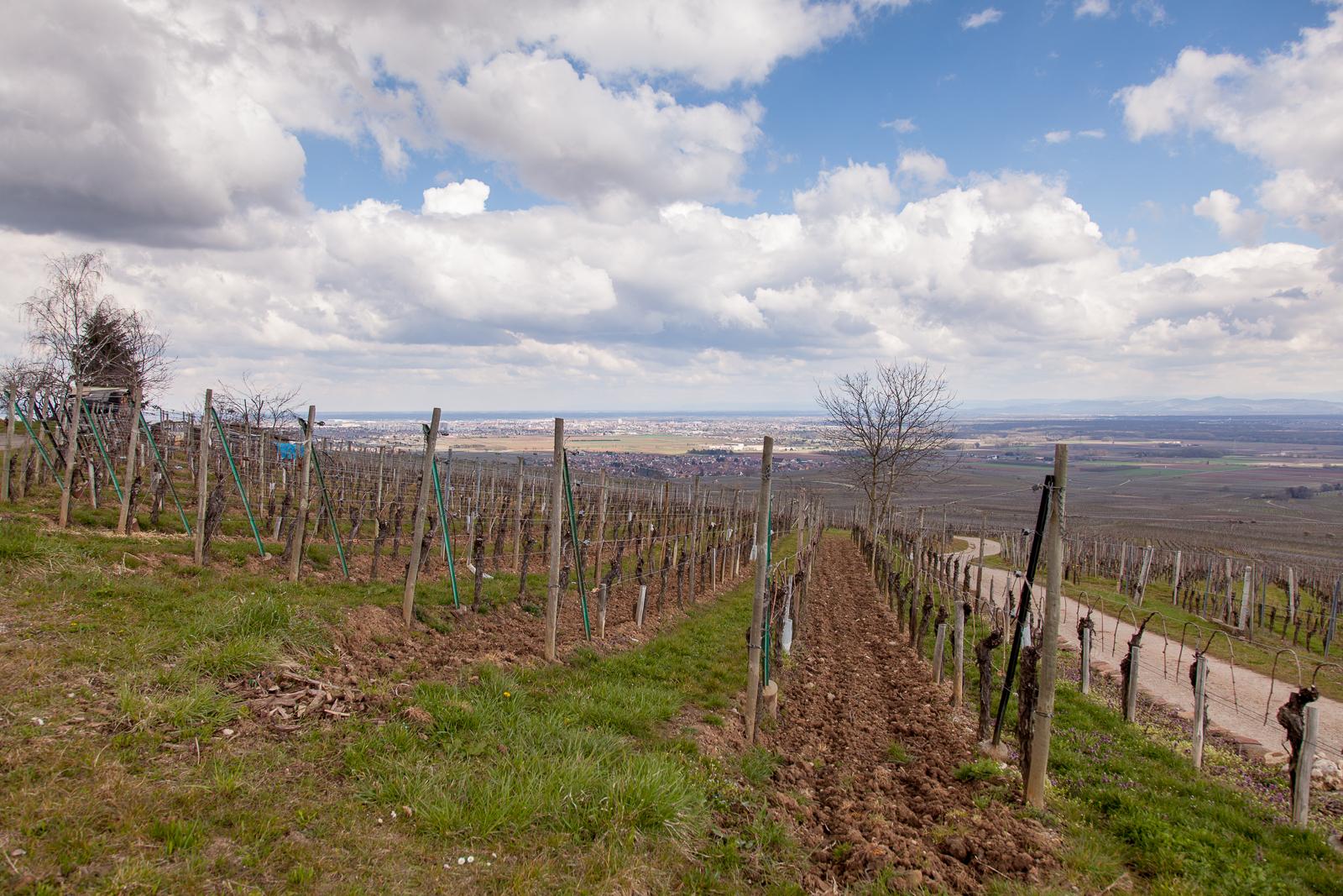 Dag02-Alsace-027-IMG_48072