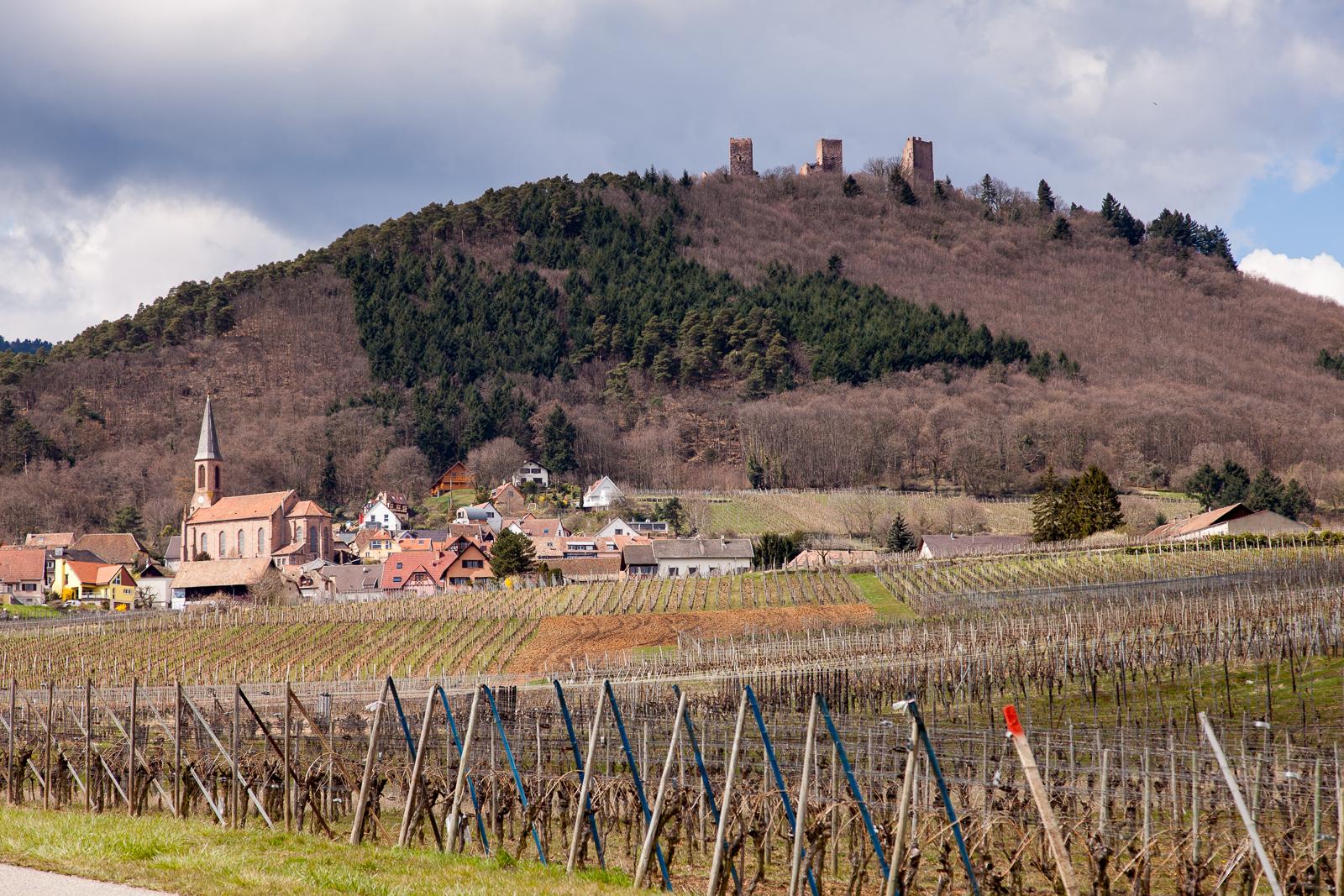 Dag02-Alsace-034-IMG_48092