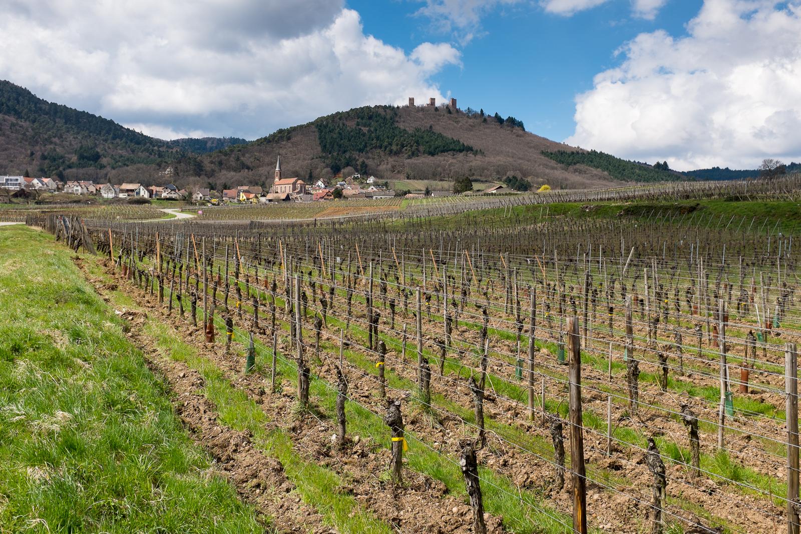 Dag02-Alsace-037-DSCF1321