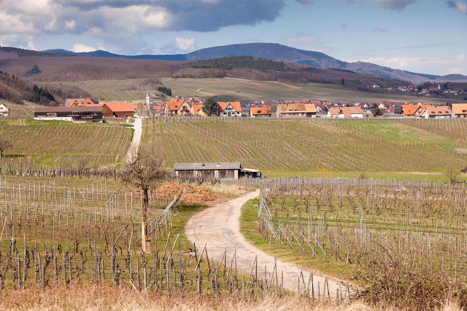 Dag02-Alsace-047-IMG_48137