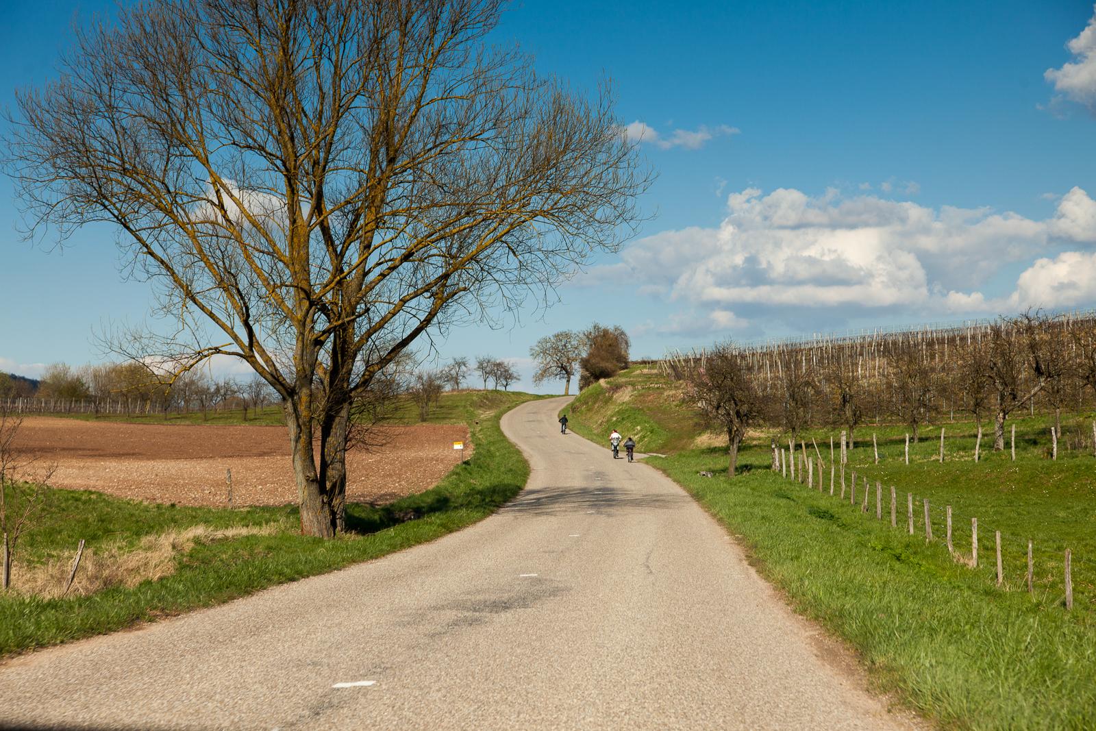 Dag02-Alsace-054-IMG_48163