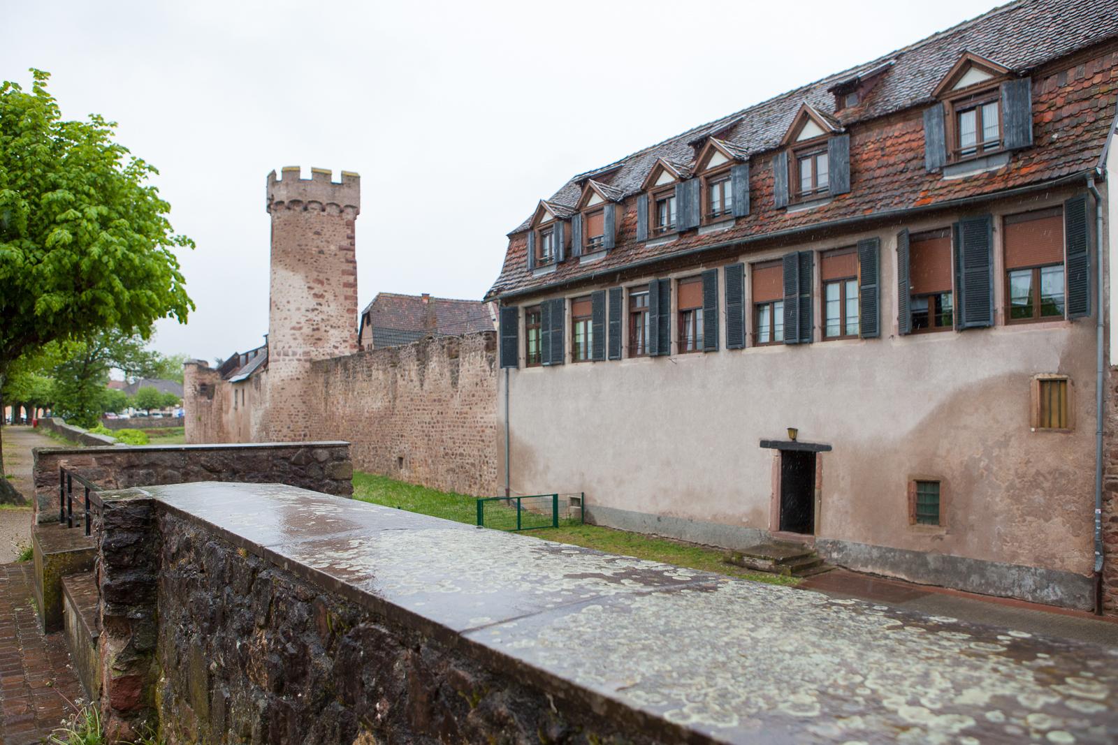 Dag01-Alsace-047-IMG_48603