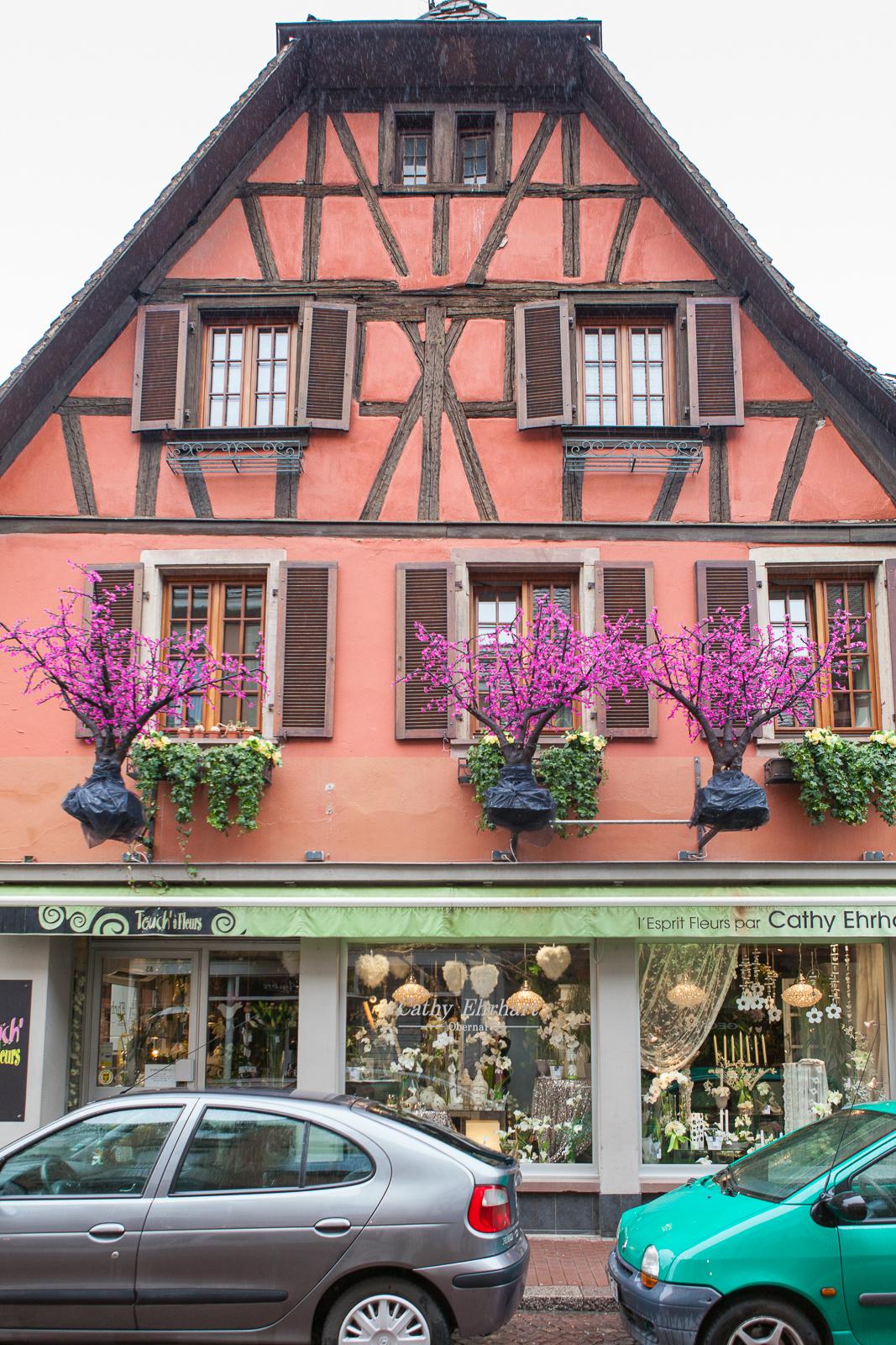 Dag01-Alsace-052-IMG_48608
