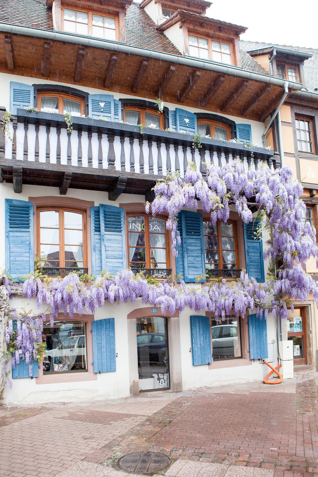 Dag01-Alsace-054-IMG_48610