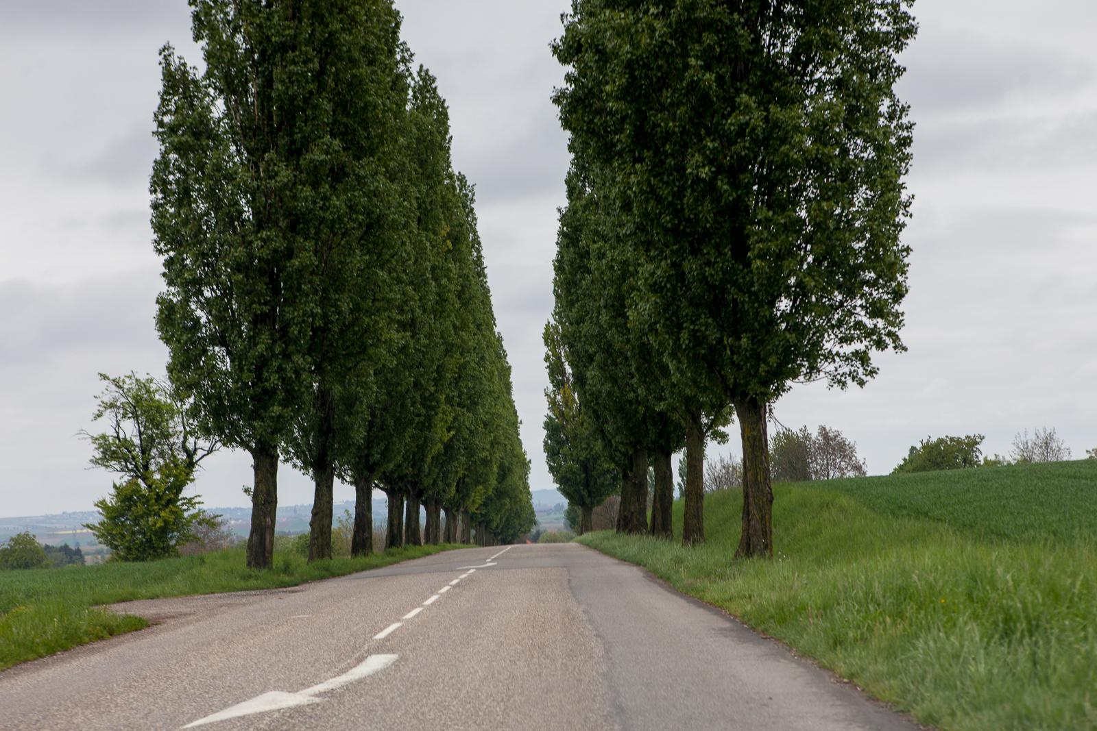 Dag02-Alsace-012-IMG_48631