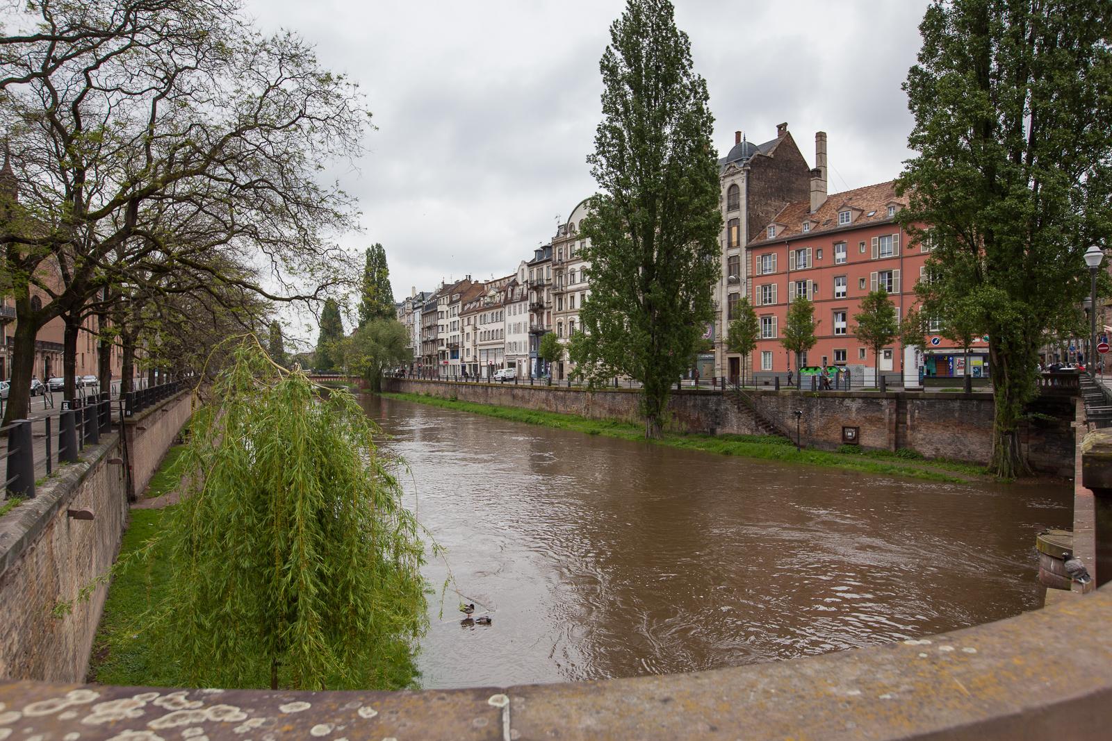 Dag02-Alsace-020-IMG_48652