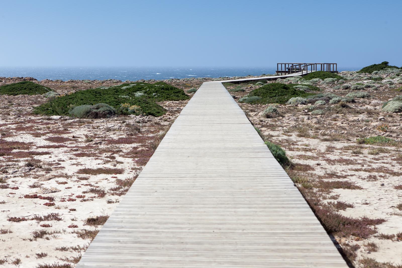 Dag04-Algarve-050-IMG_49256