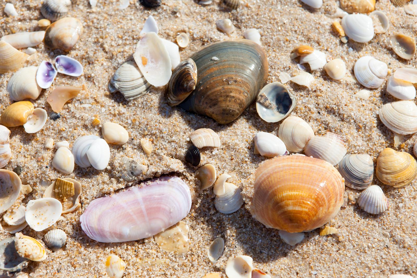 Dag07-Algarve-023-IMG_49564