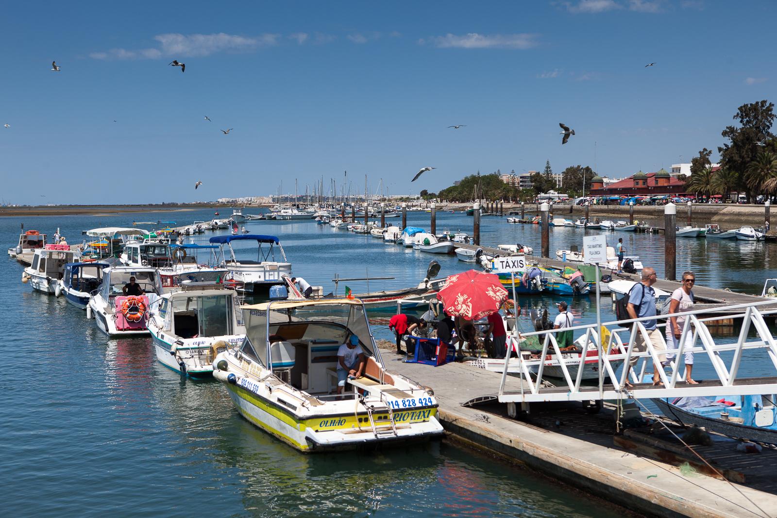 Dag08-Algarve-005-IMG_49605