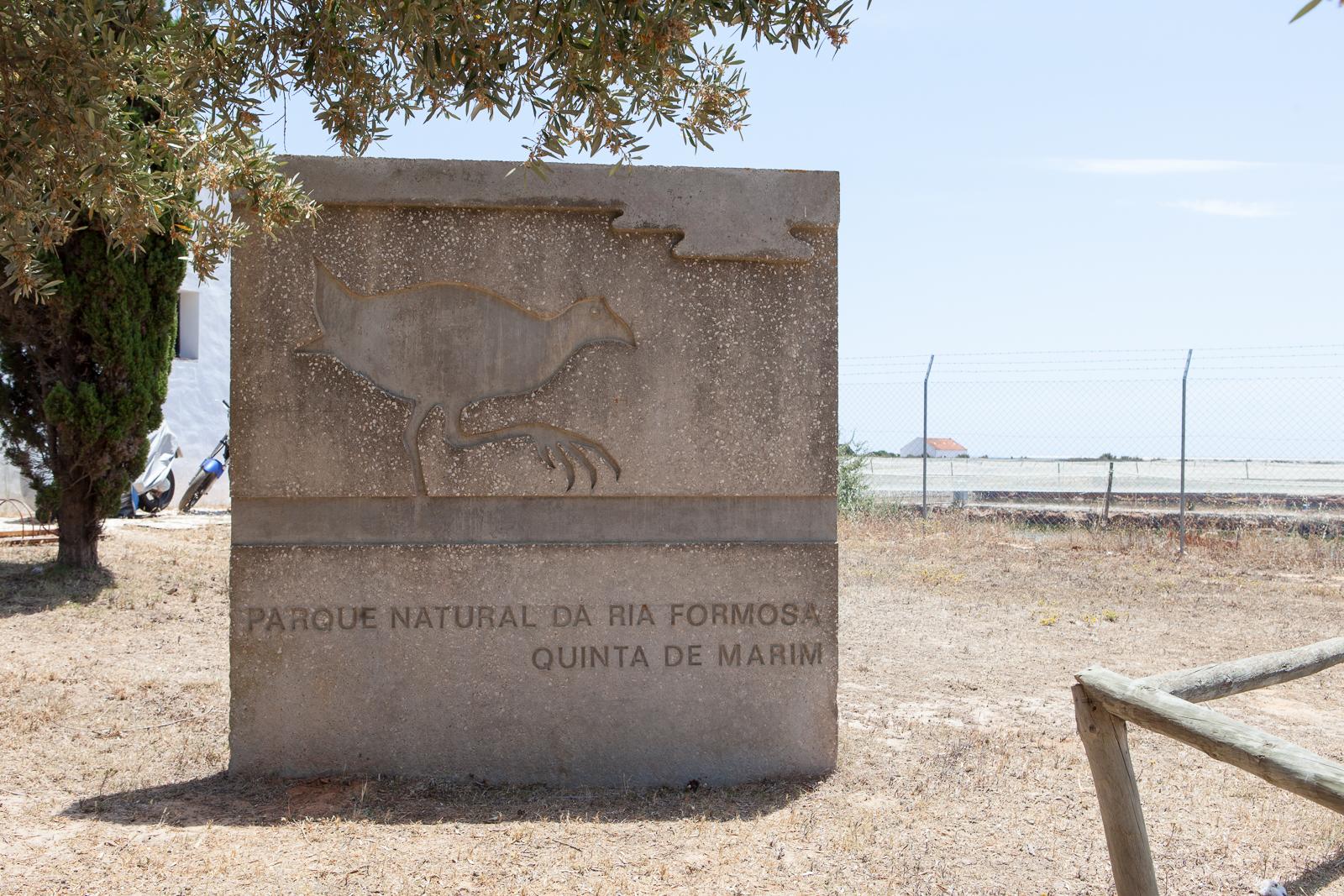 Dag08-Algarve-018-IMG_49631