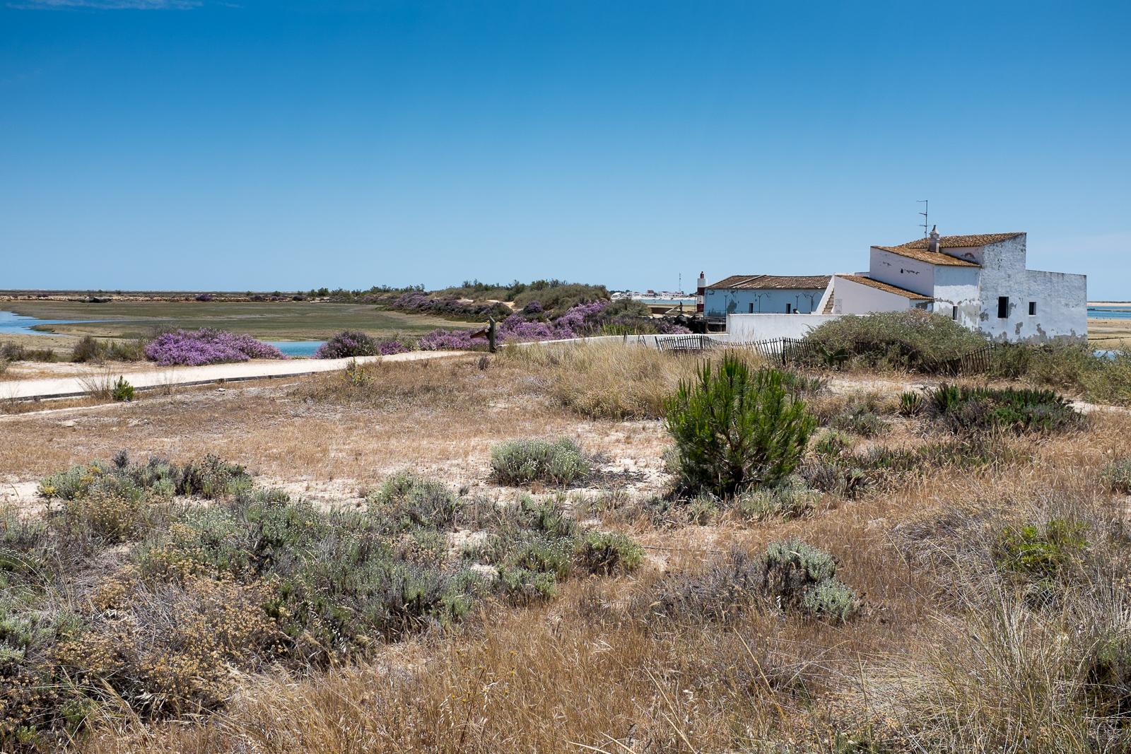 Dag08-Algarve-023-DSCF1981