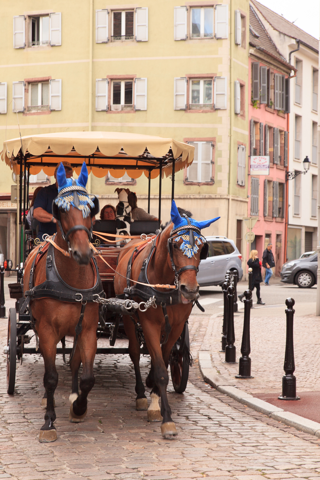 Dag01-Alsace-043-IMG_51906