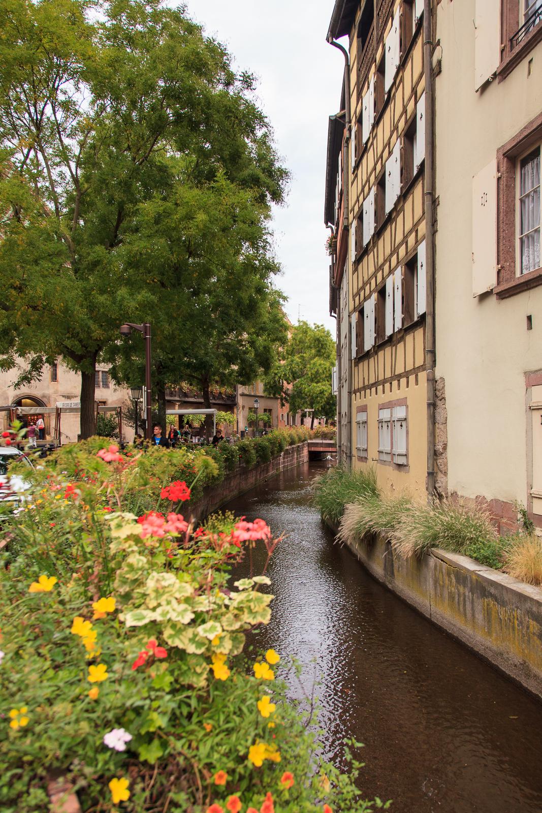 Dag01-Alsace-086-IMG_51951