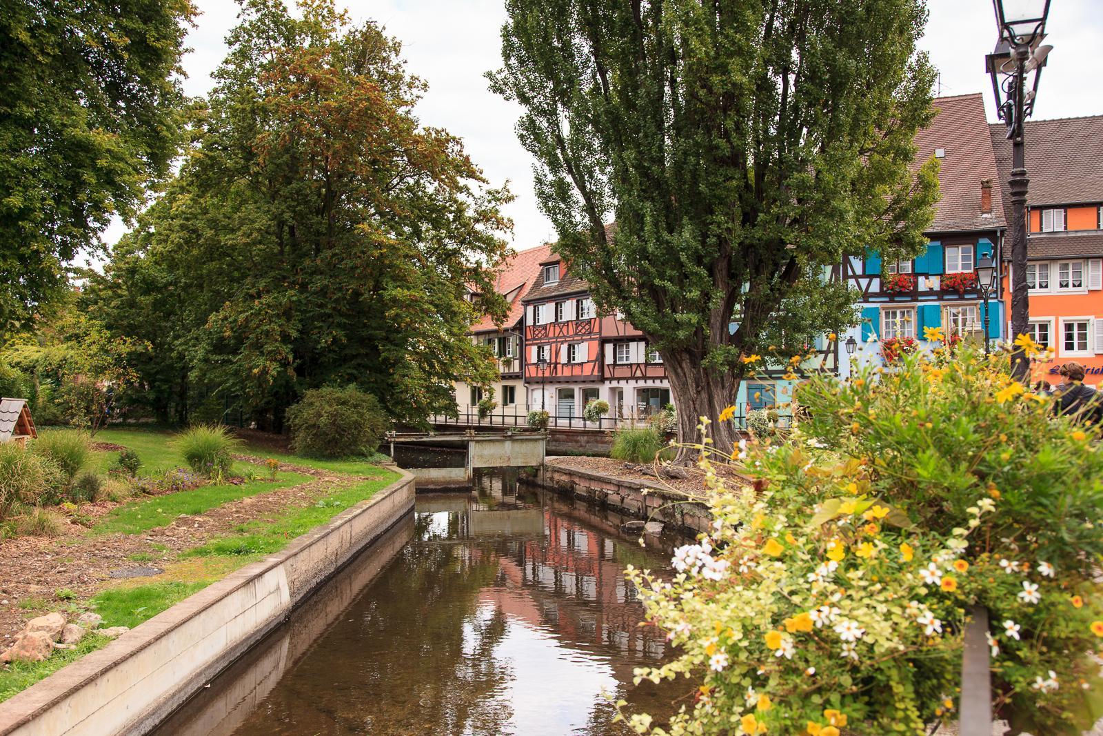 Dag01-Alsace-095-IMG_51958