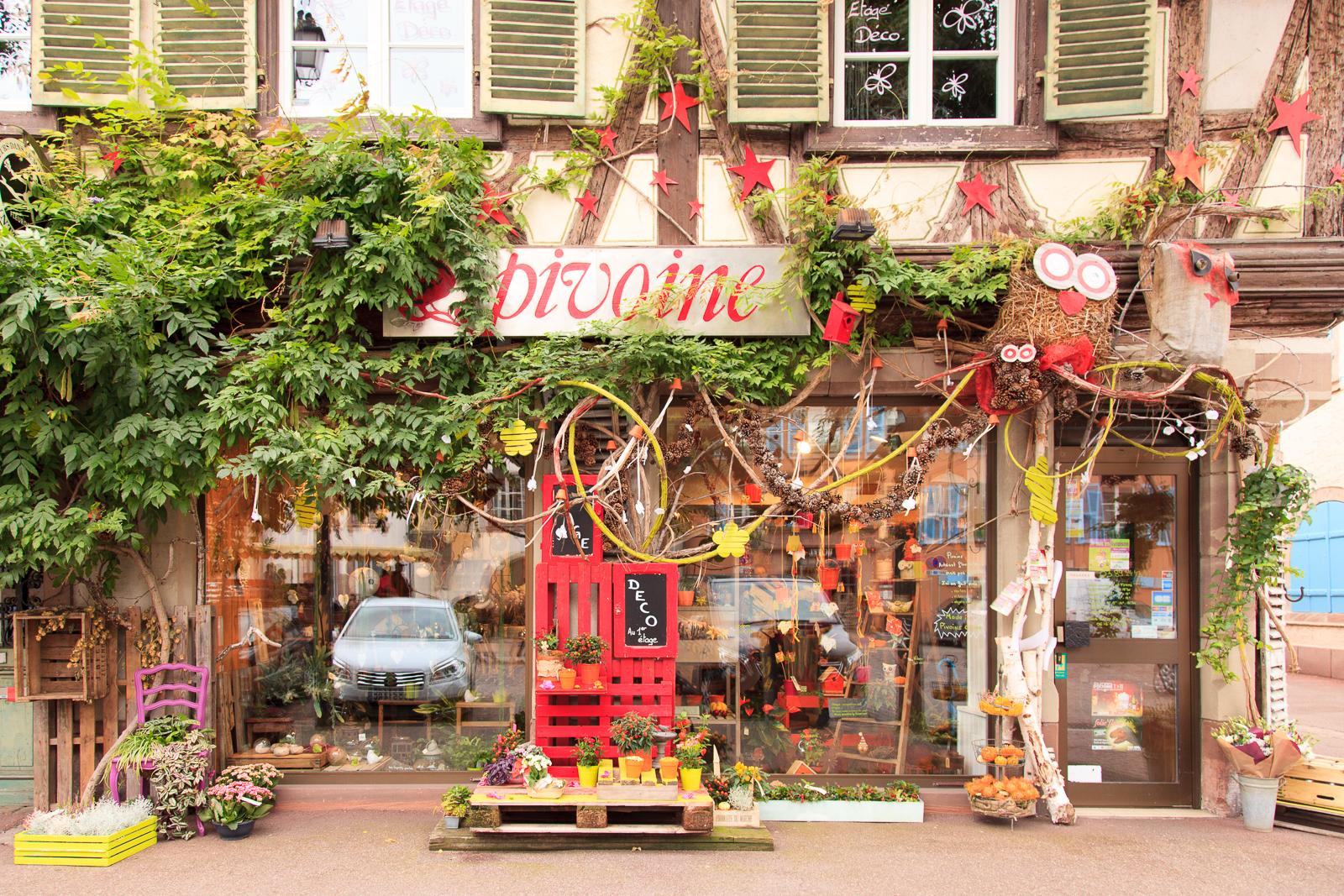 Dag01-Alsace-106-IMG_51976