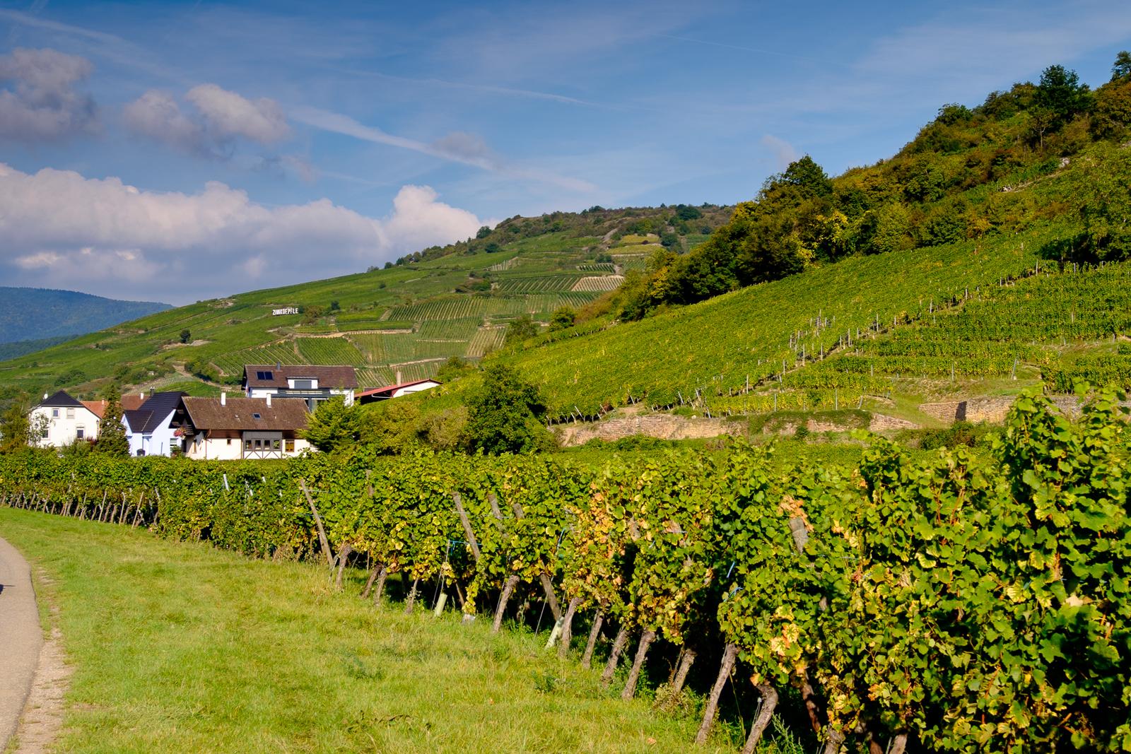 Dag02-Alsace-032-DSCF1192