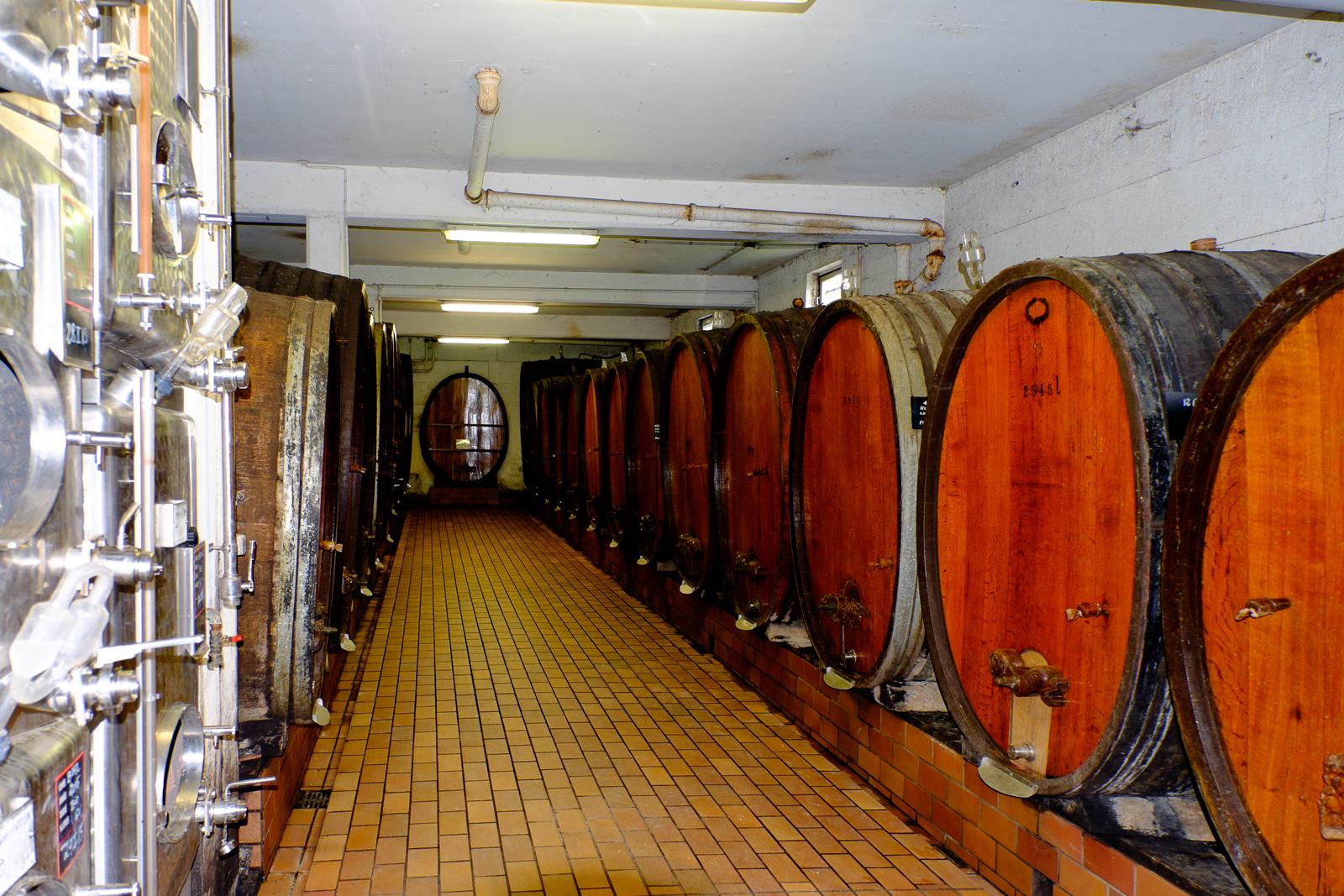 Dag02-Alsace-066-DSCF1220