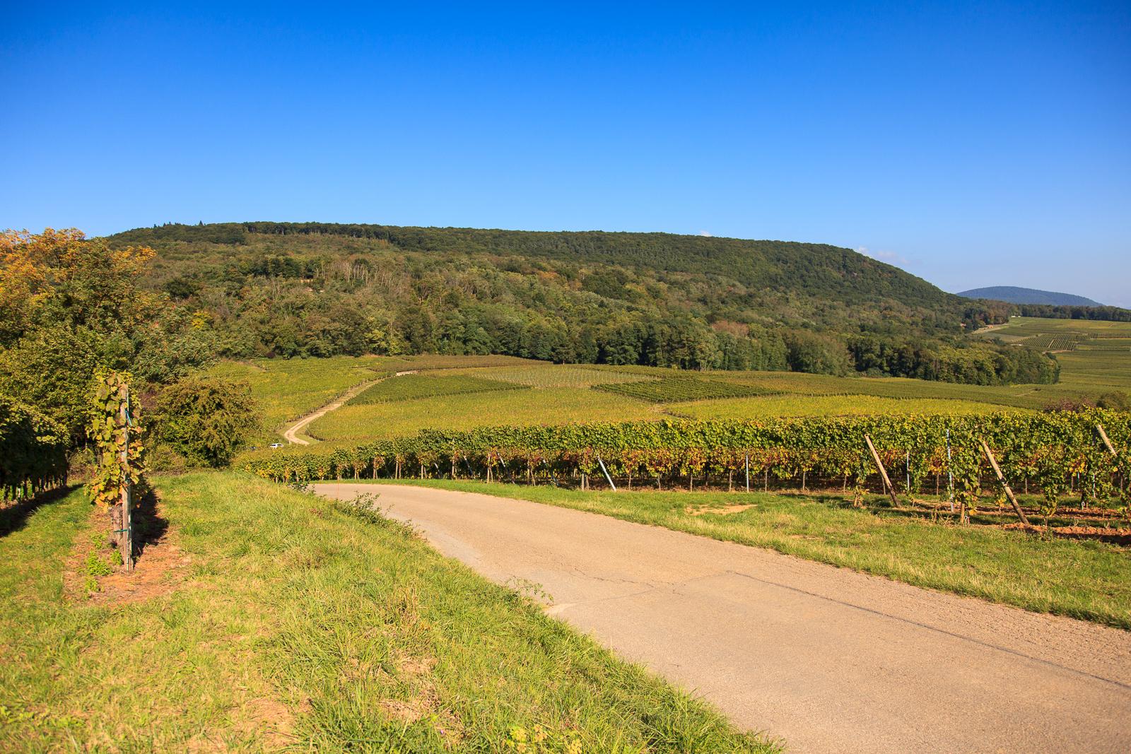 Dag03-Alsace-009-IMG_52101