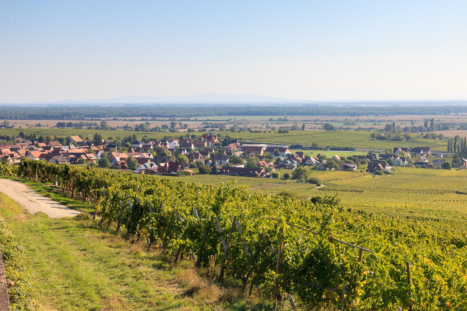 Dag03-Alsace-014-IMG_52114