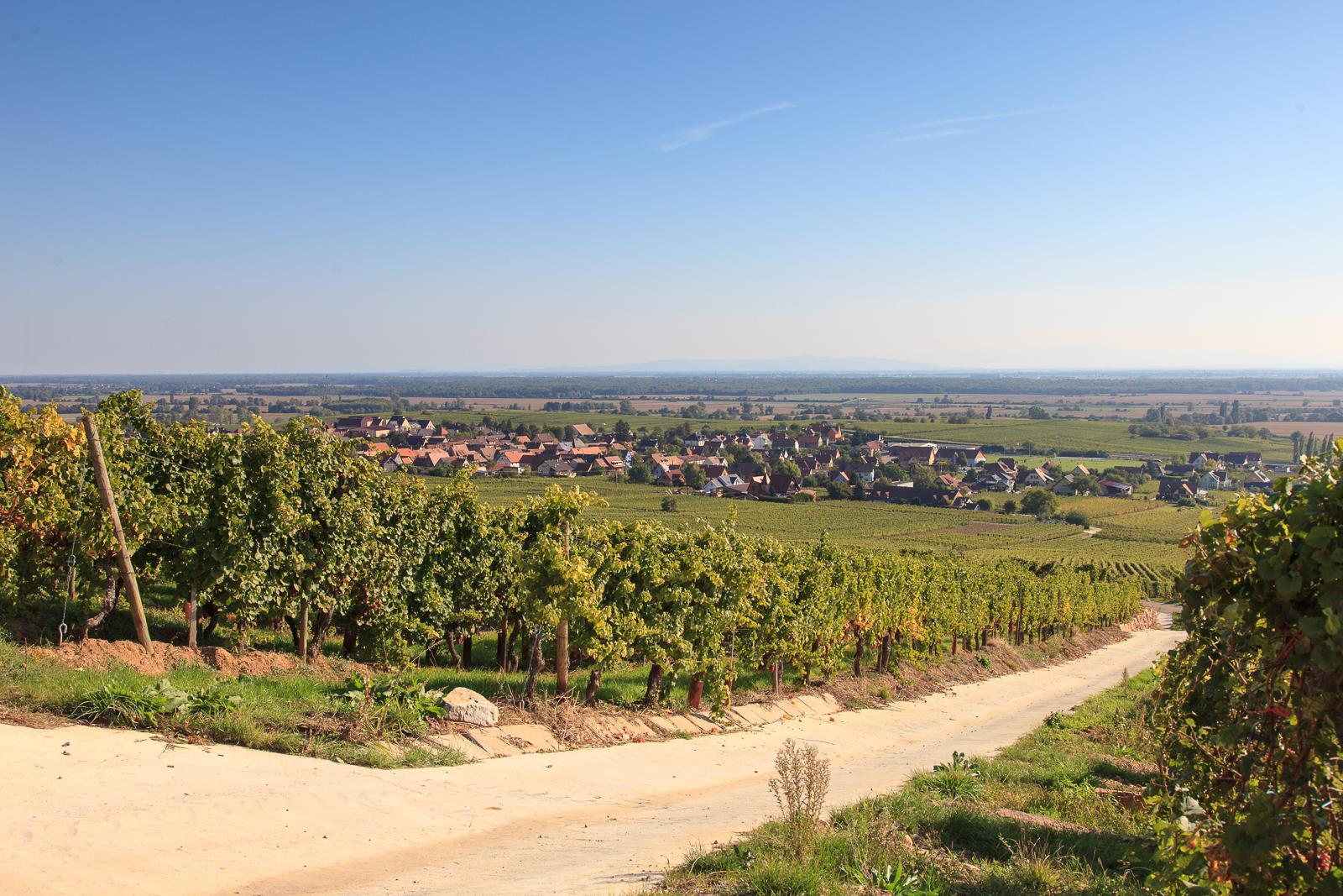 Dag03-Alsace-015-IMG_52116