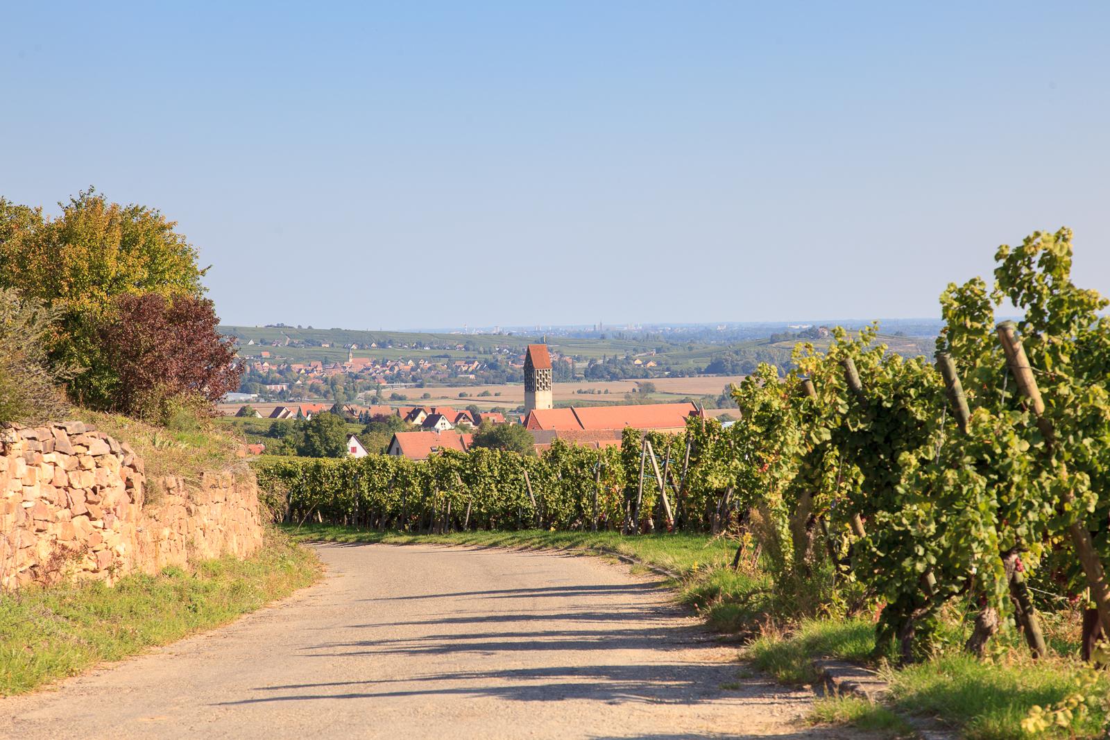 Dag03-Alsace-016-IMG_52117