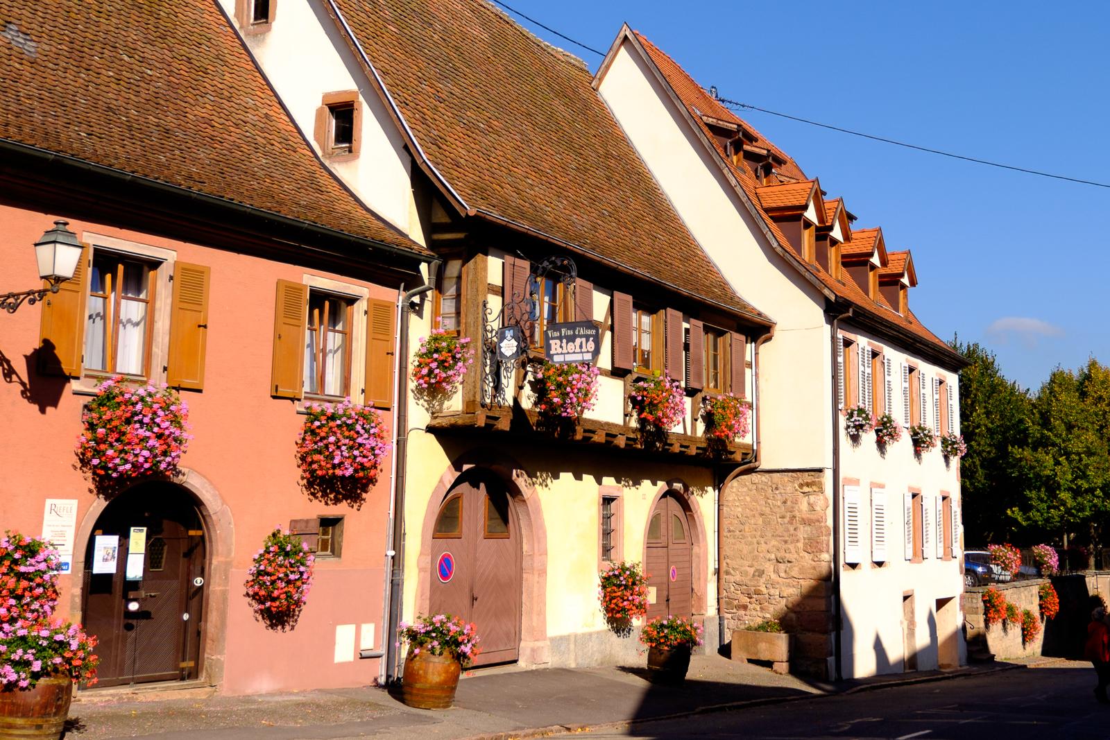 Dag03-Alsace-023-DSCF1223