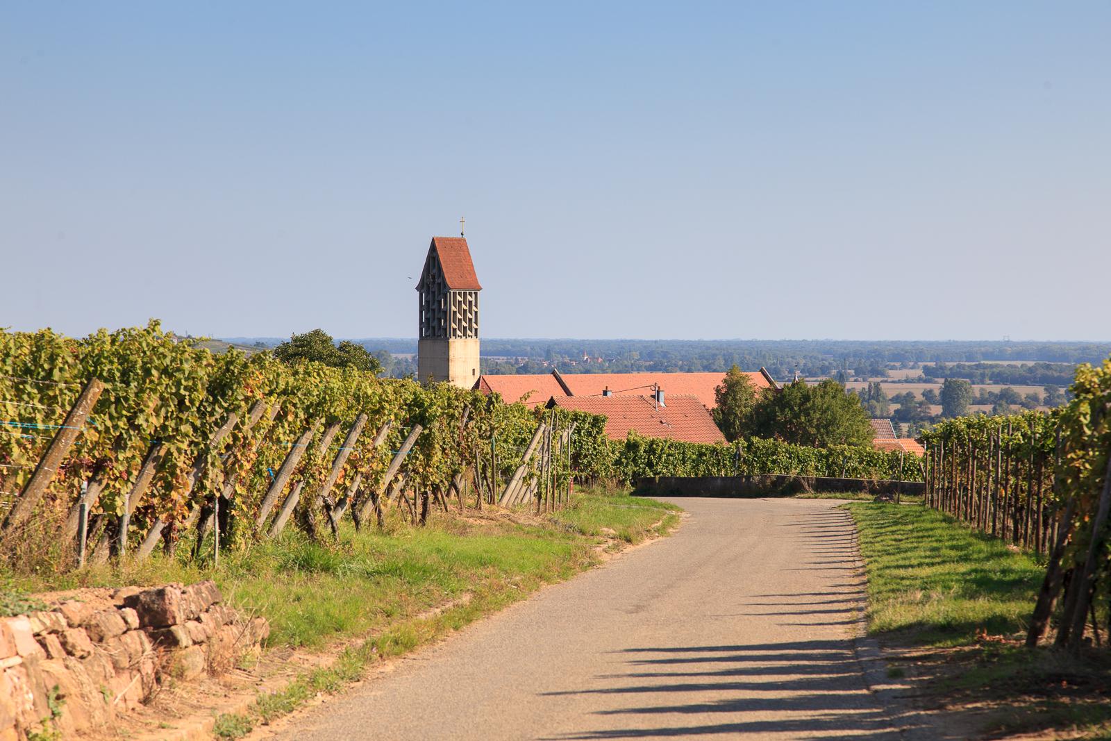 Dag03-Alsace-028-IMG_52131