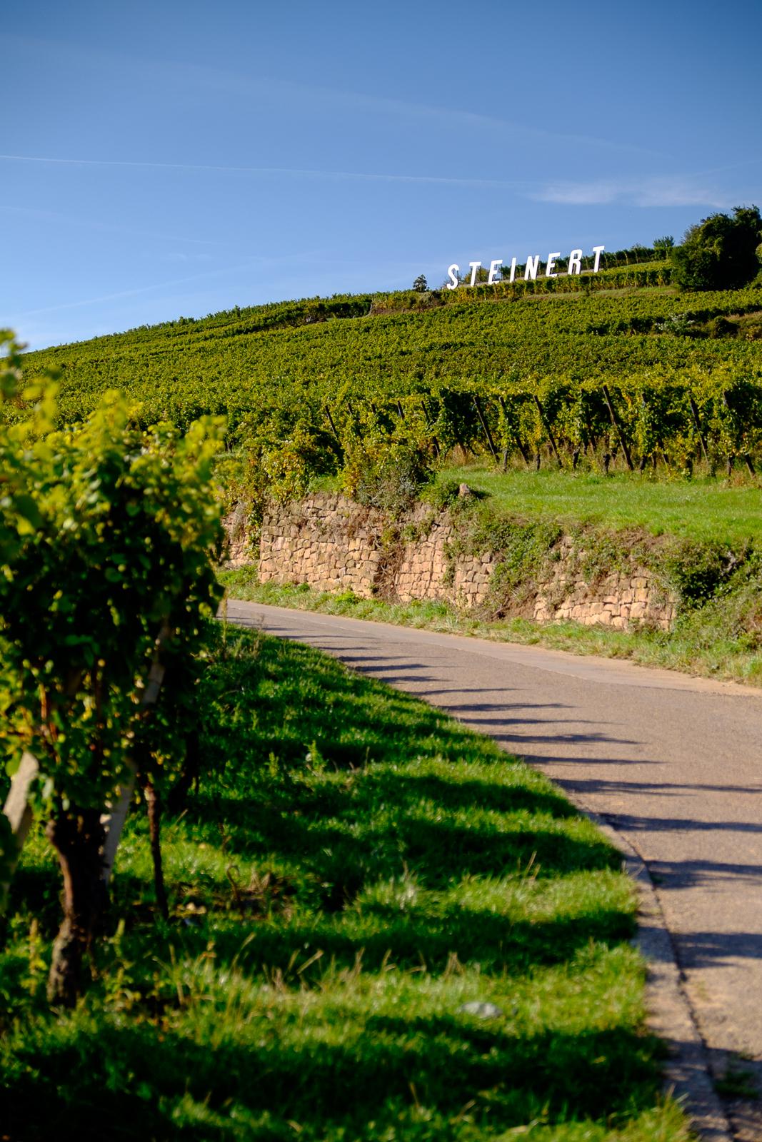 Dag03-Alsace-030-DSCF1226