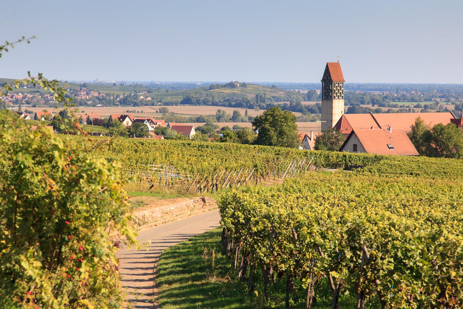 Dag03-Alsace-031-IMG_52136