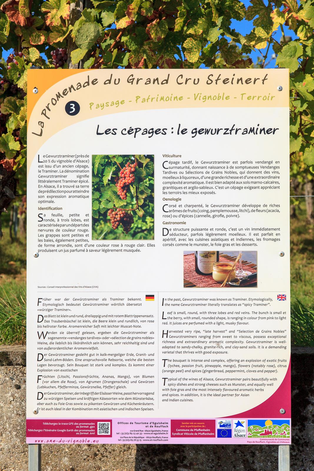 Dag03-Alsace-035-IMG_52139