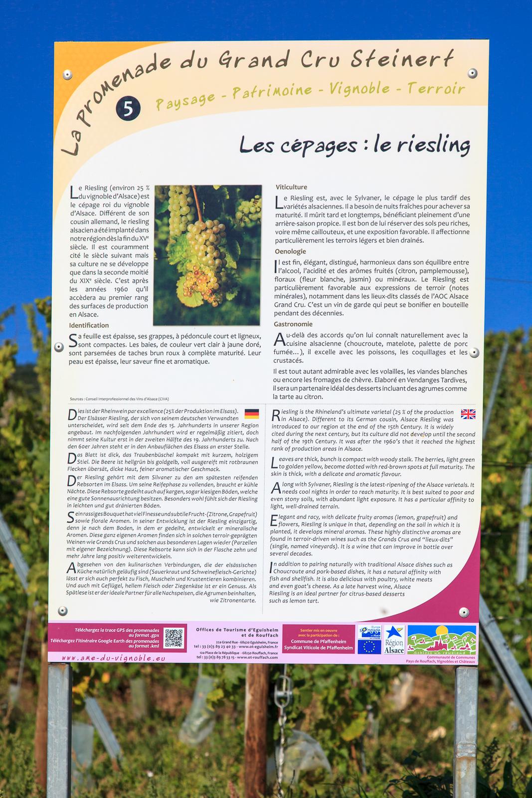 Dag03-Alsace-037-IMG_52143