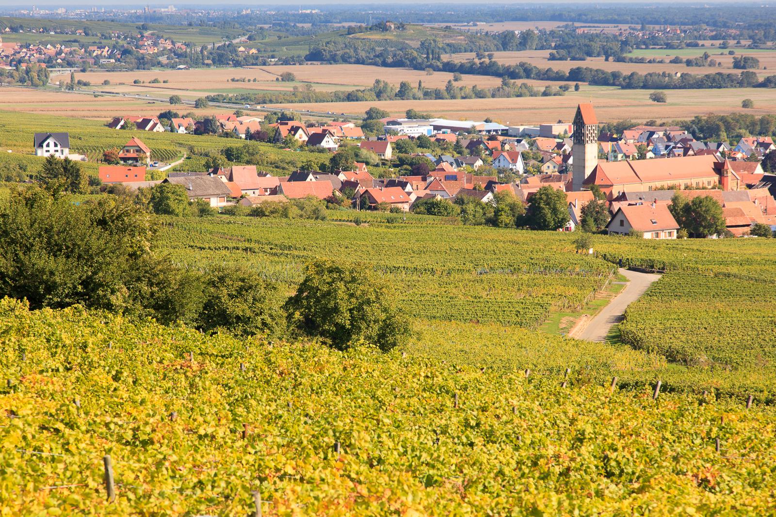 Dag03-Alsace-040-IMG_52149