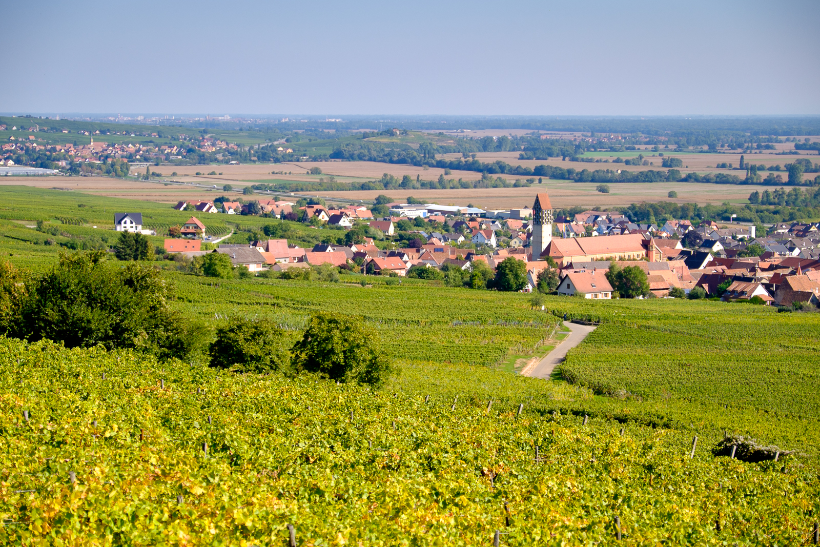 Dag03-Alsace-041-DSCF1231