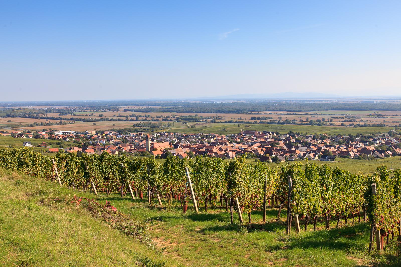 Dag03-Alsace-044-IMG_52154