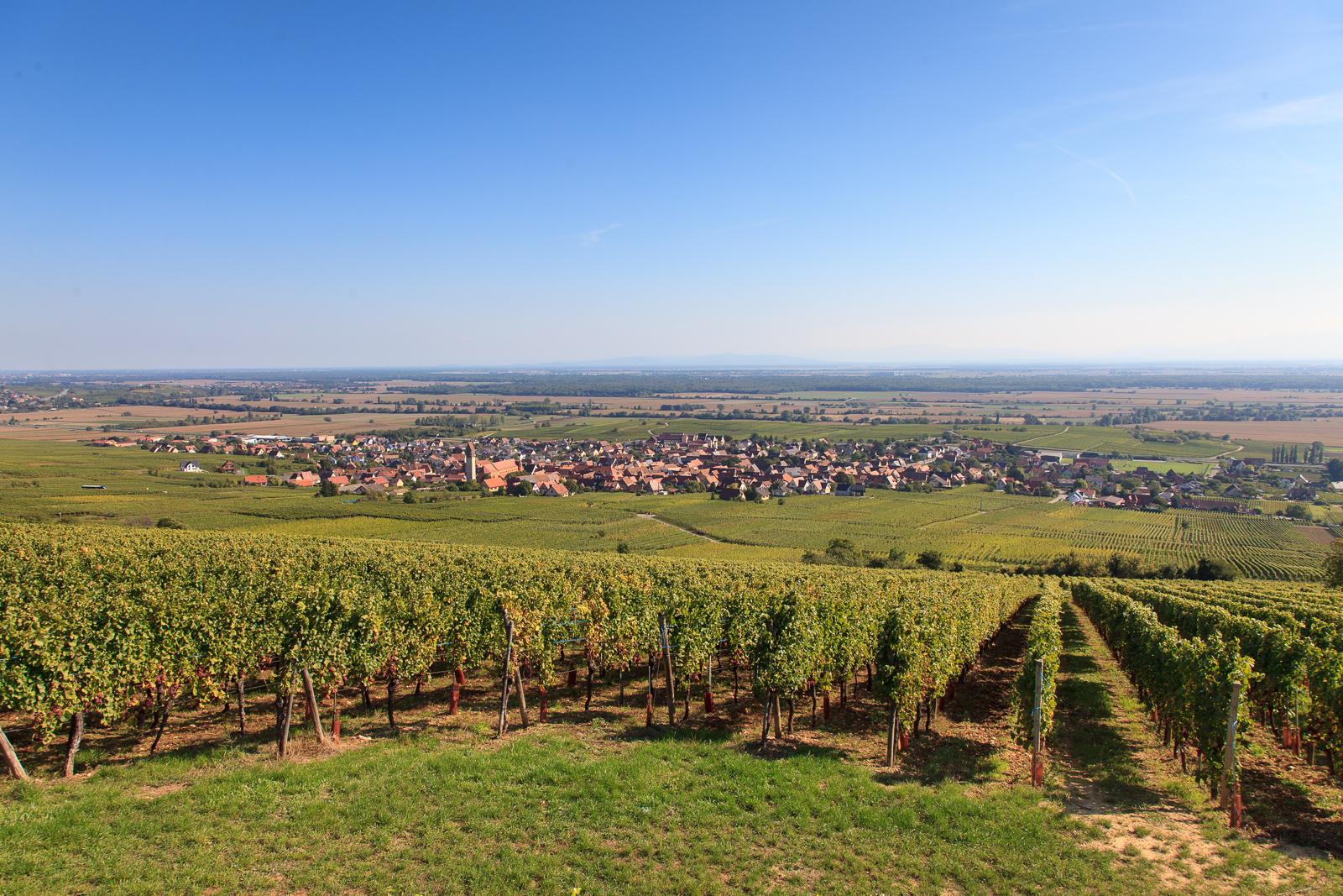 Dag03-Alsace-046-IMG_52157
