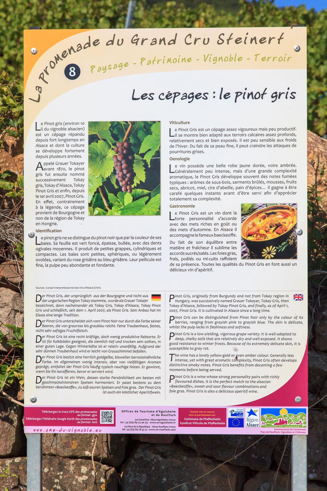 Dag03-Alsace-049-IMG_52158