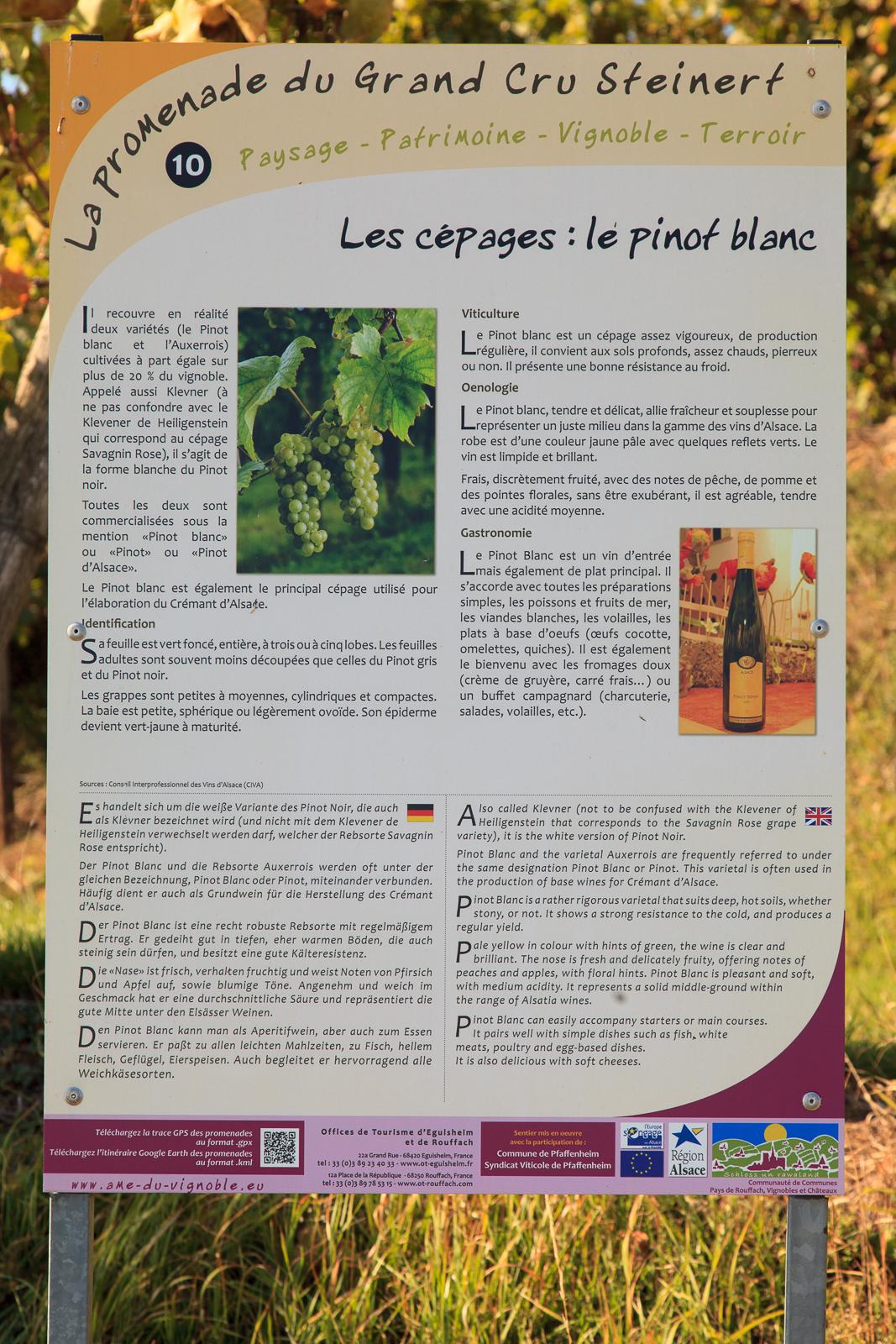 Dag03-Alsace-051-IMG_52165
