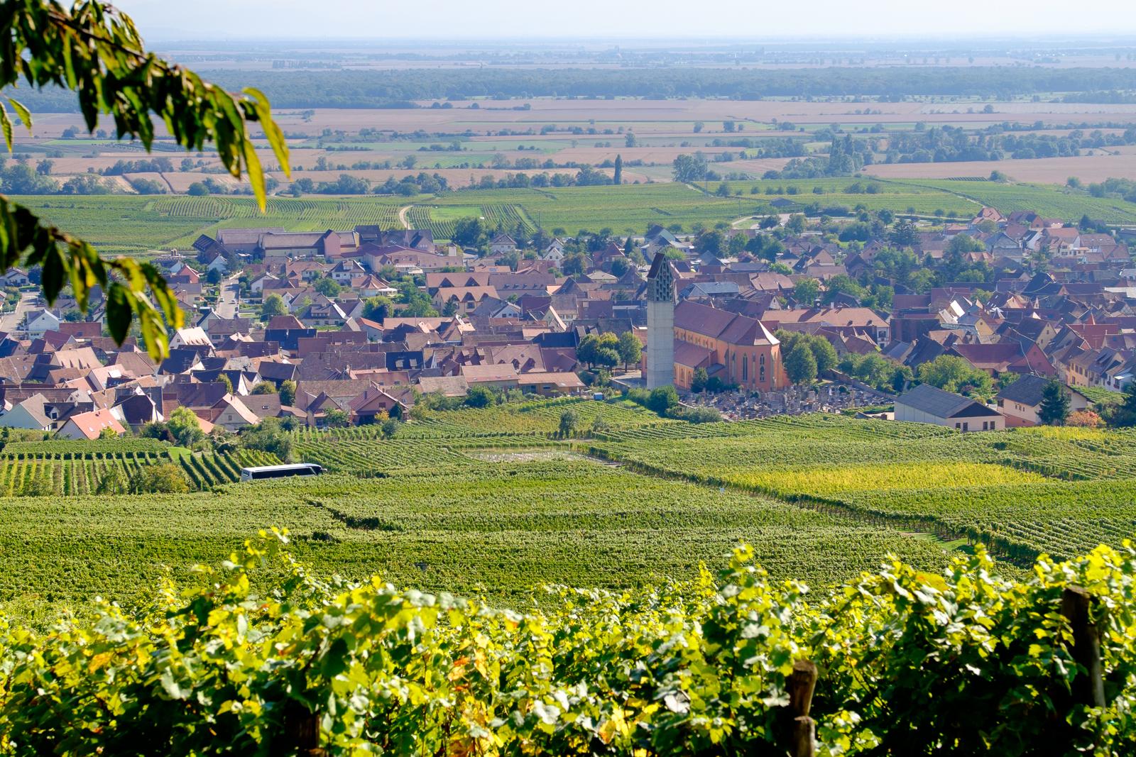 Dag03-Alsace-055-DSCF1239