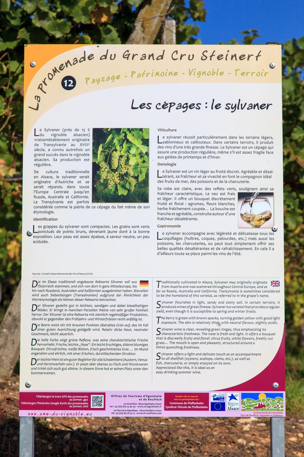 Dag03-Alsace-056-IMG_52174