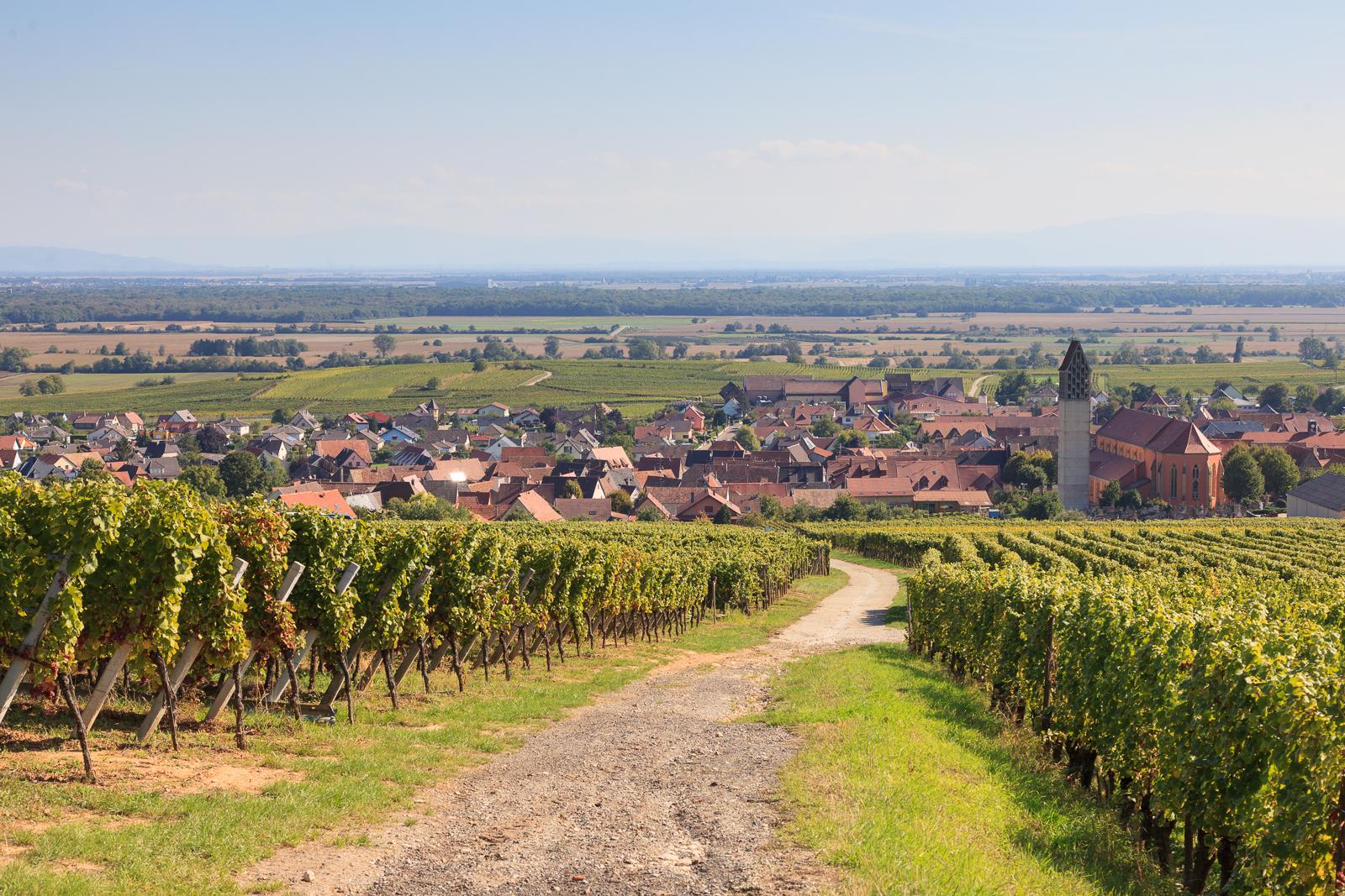 Dag03-Alsace-057-IMG_52175