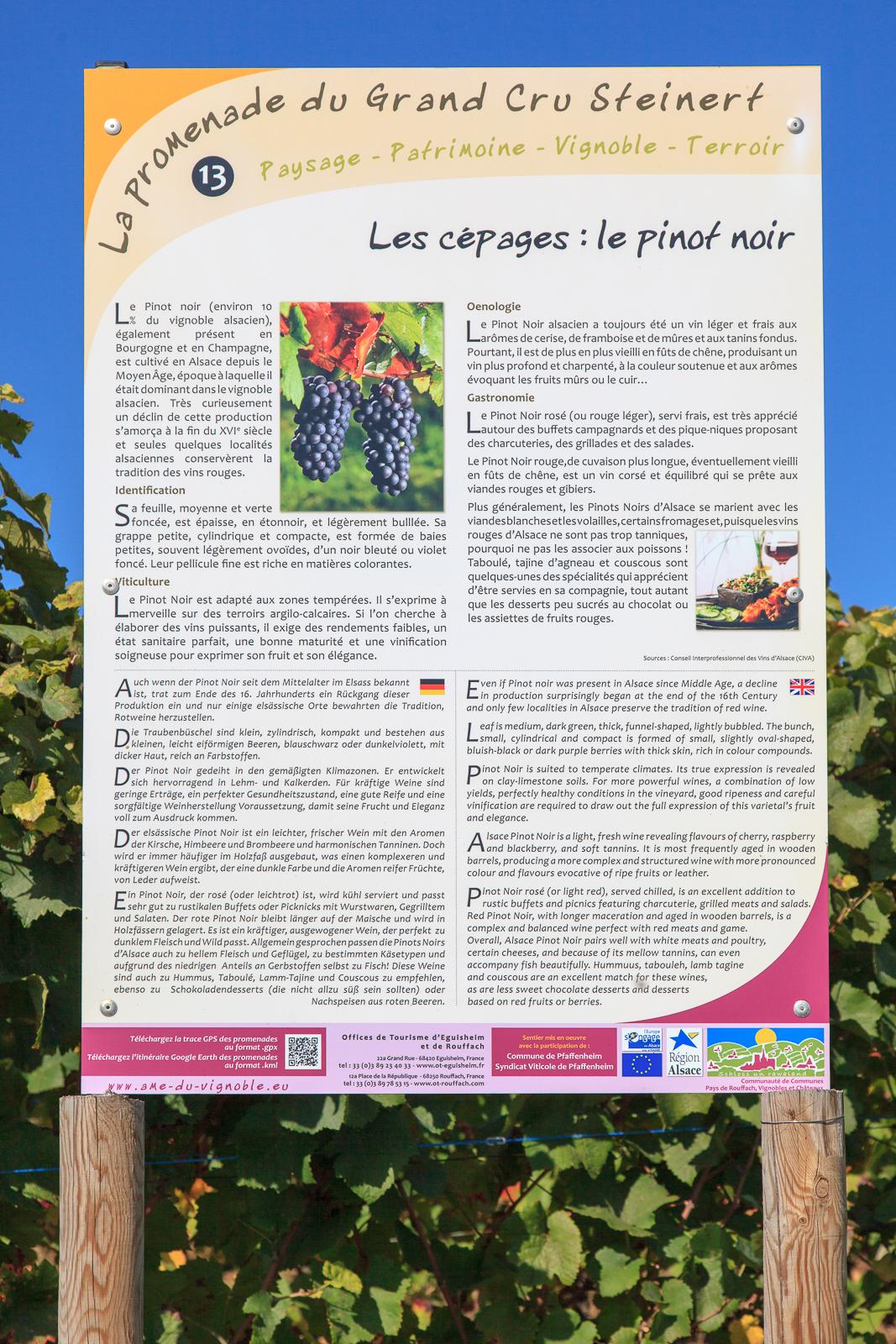 Dag03-Alsace-058-IMG_52176