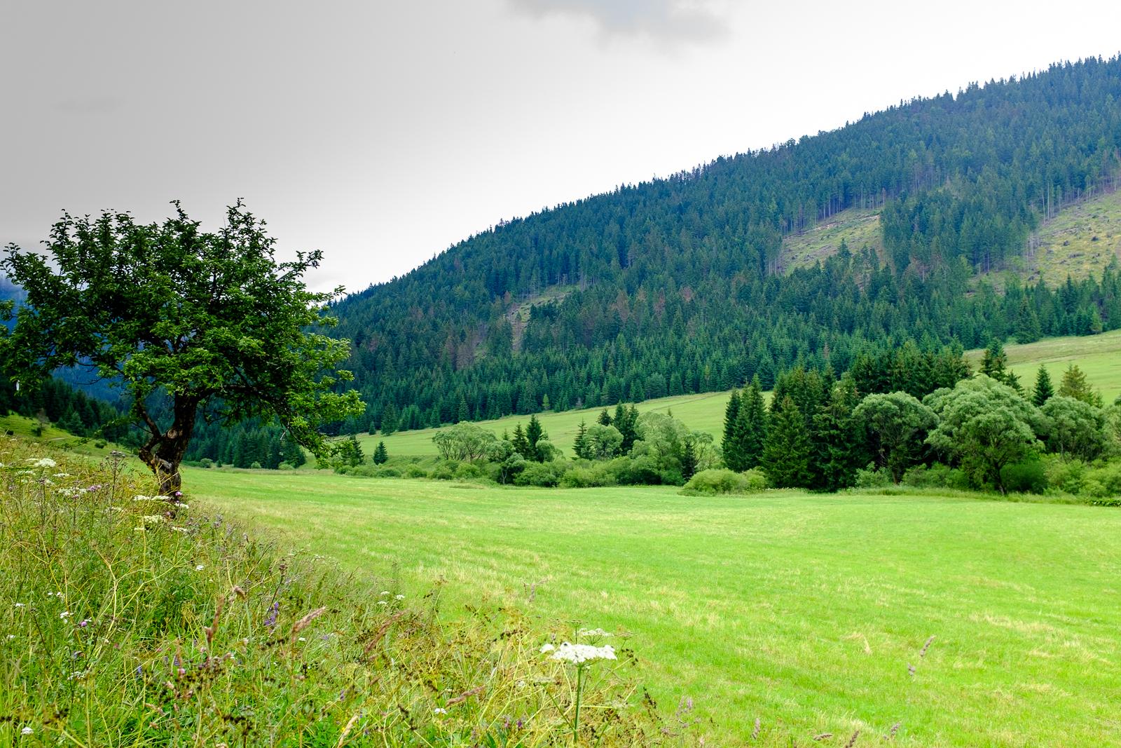 SlowakijeDag4-046