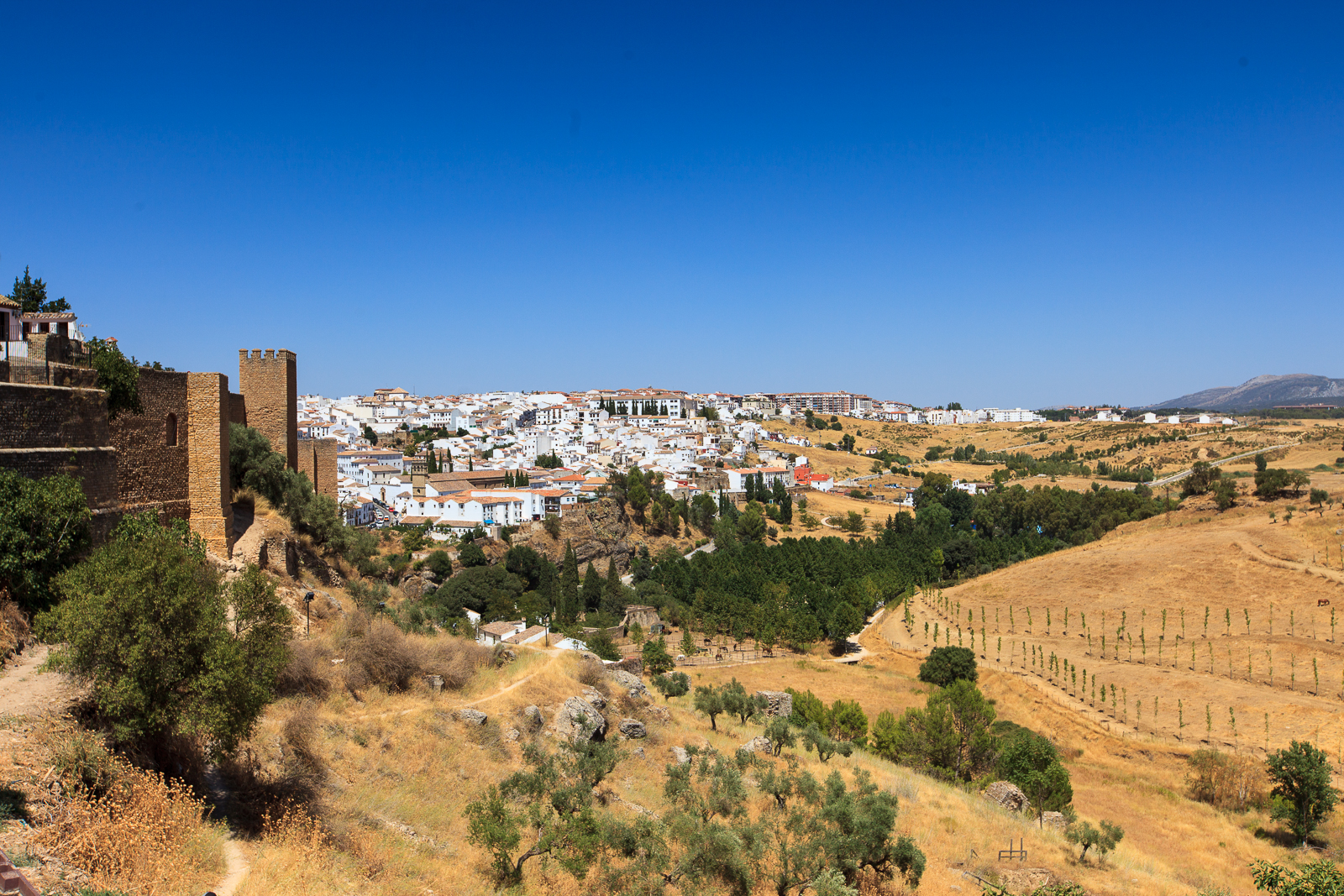 Dag06-Andalusie-032-IMG_57018